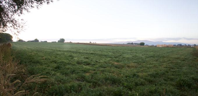 Burley Idaho Land For Sale